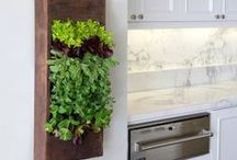&LIVING WALLS / How to add lush greenery to your walls!