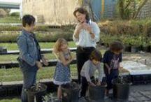 Kids learn about Gardening! / Kids go on field trips to learn about gardening.