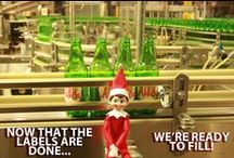 Meet Fizz the Ale-8-One Elf on the Shelf / Fizz arrived in early December and is more than ready to get to work. Follow this board in order to keep up with all of his adventures here at Ale-8-One.