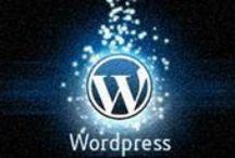 WordPress / Discuss about WordPress Theme, Plugins and many more