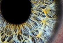 """Eyes / - Les yeux sont le miroir de l'âme, donc quand tu dis """"Wesh"""", faut regarder dans les yeux -  VALD"""