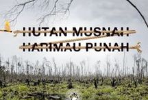 Protect Paradise / Ekspansi perkebunan sawit yang tidak bertanggung jawab ke hutan alam mengancam masa depan Harimau Sumatera dan teman-temannya. Gabung di www.protectparadise.org dan lakukan sesuatu untuk menyelamatkannya