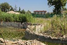 Ex Ospedale, via Circonvallazione / Documentazione fotografica di Giulia Candussi