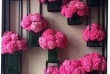 Blomster / dekorasjon