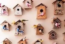 birds&houses