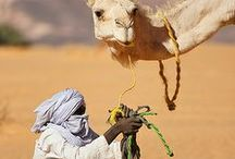 Colours of Sahara Desert
