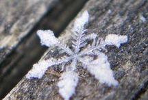 Winter....white snow....