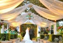 Weddingful / by Jessica King