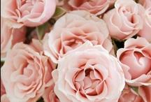 Inspiración bodas | Inspirational weddings / Imágenes que nos inspiran | Pictures that inspire us | Immagini che ci inspirano