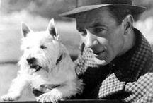❥ Gary Cooper