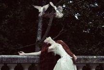 Fairytale & Fantasy