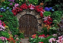 Tranquil Gardens & Nature / A garden that i wish was out my backdoor!