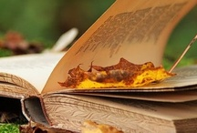 Book Art / Everything to do with books! Book Photography, Book Art, Illustrations, BOOKS! : )