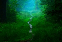 GREEN: Growth, Vitality, Nature,The color of spring, of Renewal and Rebirth. / Inspire in Green
