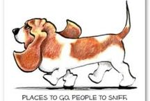 bassets,lovable rogues. /  Having had bassets in our home for over 30 years I understand their funny , lovable ways and love their affectionate,often stubborn but adorable ,gentle,nature. I couldn't imagine life without them!,droopy,millie ,ozzie! / by anne ryan