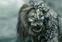 гривы / арты львов