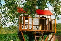 Tree Houses / Tree Houses from all over the world!