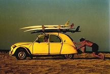 Home : surf