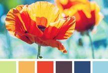 Colour Combinations!!