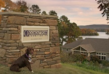 Hot Springs Bed & Breakfast :: Lookout Point Lakeside Inn / Ray & Kristie Rosset built the picturesque Lookout Point in 2003. Feel rejuvenated in the tranquil setting of this Hot Springs Bed & Breakfast overlooking the serene waters of Lake Hamilton.
