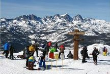 Ski Offers / Winter is coming and snow sports will be your source of fun. Browse through American resorts and choose your favorite. If you are planning on spending a winter vacation in Europe, the best resorts in Switzerland and Austria are the most competitive in matters of slopes, accommodation and price