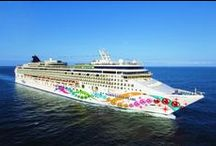 Cruises / Cruise offers