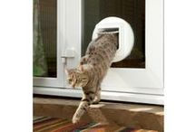 How to fit a cat flap / If you're a cat lover, you probably need to let your cat in and out all the time. A cat flap is a safe and handy solution which you can easily fit into a door yourself.