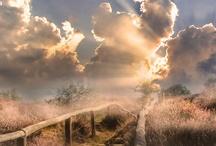 Fence, path and passage / by Ratna Setiawati