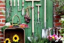 Gardening / by Ratna Setiawati