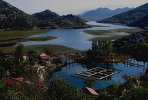 Montenegro's Lake Skadar