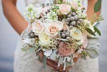 The Bouquet / Ideas for The Bouquet.