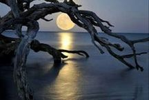 The Moon / Beautiful pictures of the moon