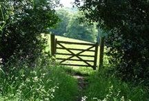 Doors, windows, pathways and gateways