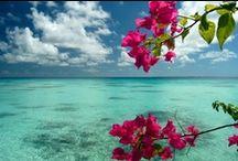 Sardegna-il mio paradiso <3