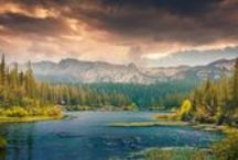 Nature / Animals; Rivers; Sea; Mountains; Forests; Plants; Lakes