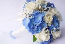 Niebieskie bukiety ślubne / Bukiety ślubny i wszelkiego rodzaju dekoracje kwiatowe.