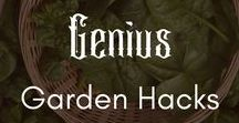 Genius Garden Hacks & Free Plans | Gardening | Homesteading | Harvest | Prepper / Love gardening? Here's your best free gardening plans, hacks, and ideas so you can grow your own vegetables!