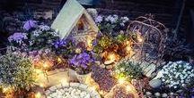Miniatur- & Feengärten / In den kleinen, feenhaften Gärten gibt es immer etwas zu entdecken. Lass Dich in zauberhafte Welten entführen und tanze mit den Elfen! Gerade wenn Du keinen eignen Garten hast, ist ein Minigarden genau das richtige für Dich, denn für die kleinen Feengärten findet man immer einen Platz!