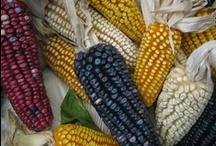 Comida - Otros alimentos (Others) / Aprende español con EducaSpain - Otros alimentos