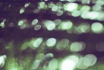 Фotography