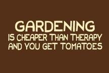 garden & yard