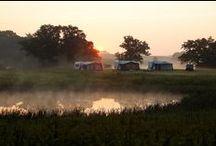 Droom kampeerplaats / Genieten vanaf de mooiste kampeerplaatsen!