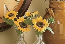 Sunflowers! / by Mary Taylor
