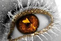 Eye of beholder / by Jeanette Huse-Schu