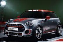 MINI / Marchio inglese di successo. Auto piccole ma di lusso molto apprezzate dal pubblico giovanile.