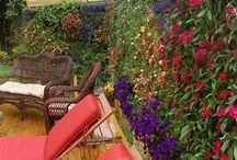 """Gardens Going Up! /   ~Vertical Gardens, """"Greenscapes""""'~Home and Architecture Design ~Living Walls~ / by Saleta Smith"""