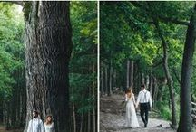 Wedding- Photo ideas