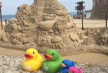 BabyDam Ducks Travel / The BabyDam family of ducks on tour! They're probably the most well travelled ducks in the world, where will they be heading to next?