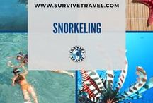 """Snorkeling Destinations and Tips / Best snorkeling destinations around the world and snorkeling tips. 