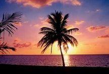 Tropical Vacation Rentals / Tropical Vacation Rentals – Professionally Managed Properties – http://RentalPlaces.com